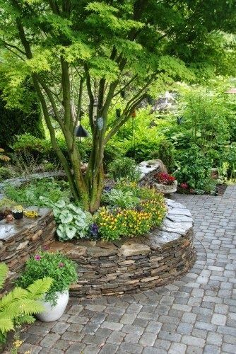 Stone, raised bed.... nice way to accent a tree.   Dreaming Gardens