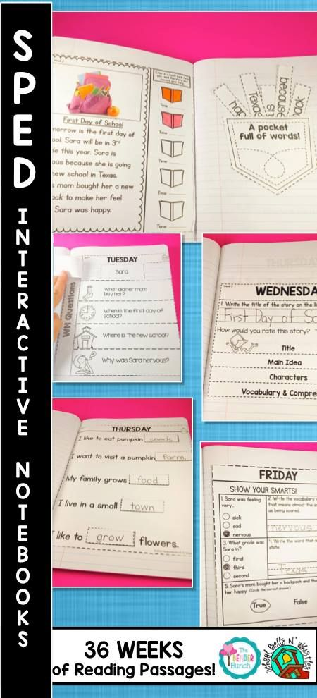Finally! Interactive Notebooks designed for Special Education classrooms! A whole year reading curriculum!