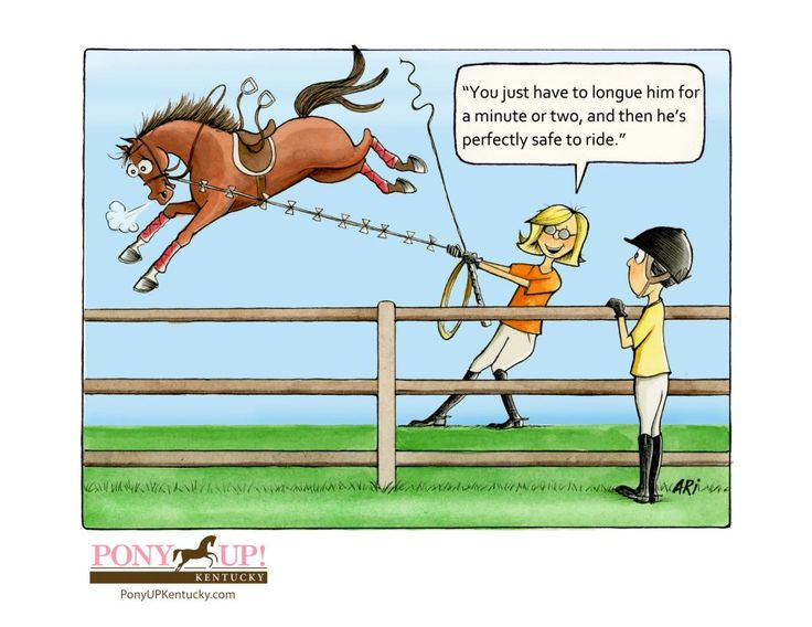 Horse Riding Cartoon | Two Of The Funniest Cartoons Ever ‹ Equestrian Horse Rider Video ...