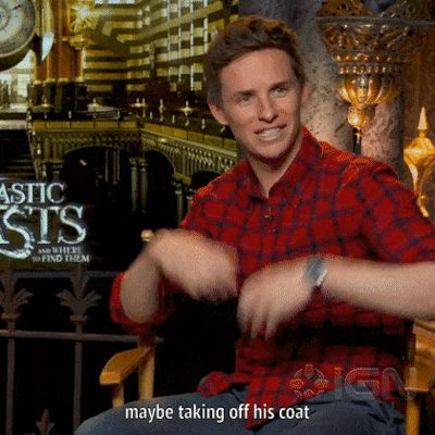 """Eddie Redmayne on what he wants in Fantastic Beasts 2: """"What I would love is… did you hear in this film a lot about him being in a field for a year, and Newt having spend a year out in Equatorial Guinea. I kinda would love to see him out sort of Tarzan-ing basically. I'd love to see him like, properly out in Equitorial Guinea, Egypt, or somewhere doing…you know, out of the field…maybe taking off his coat. Undoing his bow tie, and getting stuck in."""" (click on the gif for my gifset)"""