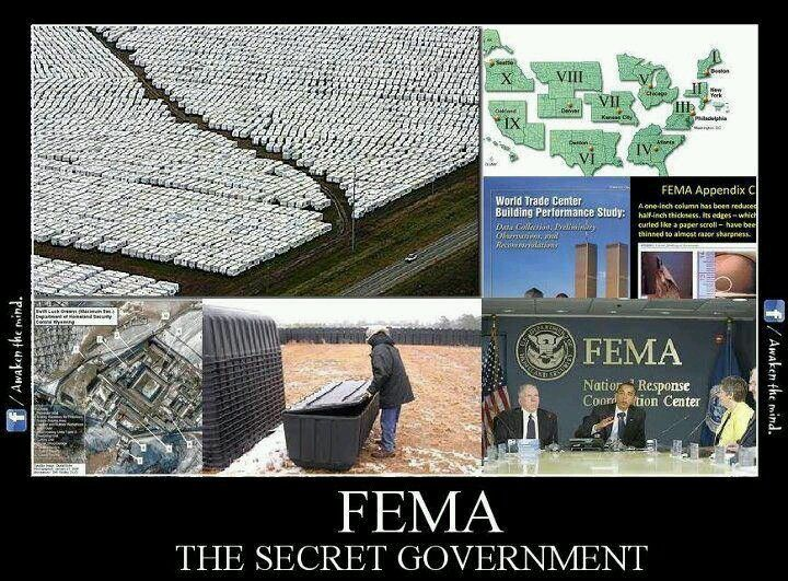 119 best FEMA  - fema application form