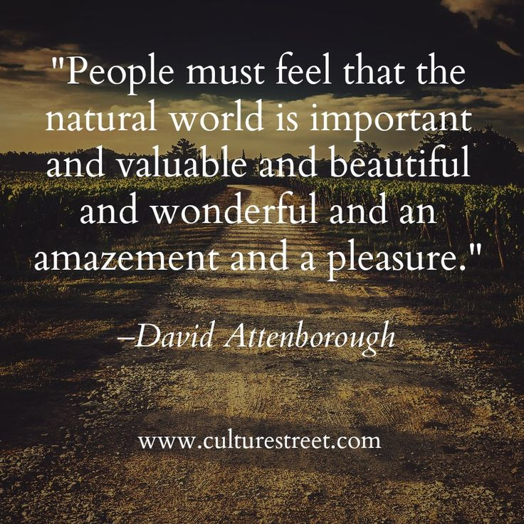 Quote of the Day from David Attenborough