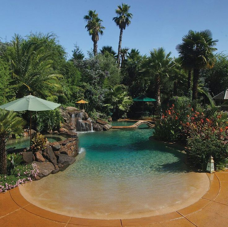 Beach entry resort style pool in backyard outside and for Garden oases pool entrance