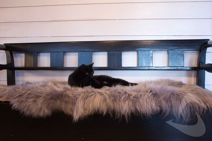 Dobbelt saueskinn med ca 2m lengde. Perfekt for benk eller på gulvet. Islandsk saueskinn med langhåret tykk ull. Farge grey brisa. http://www.multitrend.no/fra-Island-170-200cm-grafarget-Saueskinn/cat-p/c100193/p10501608 Gratis frakt