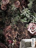Tapeten  - BlumenTapeten Velvet