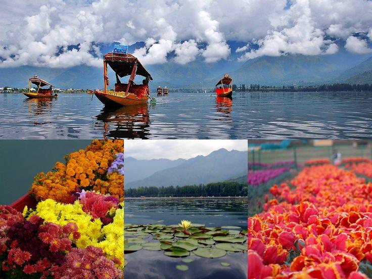 paradise on earth, kashmir