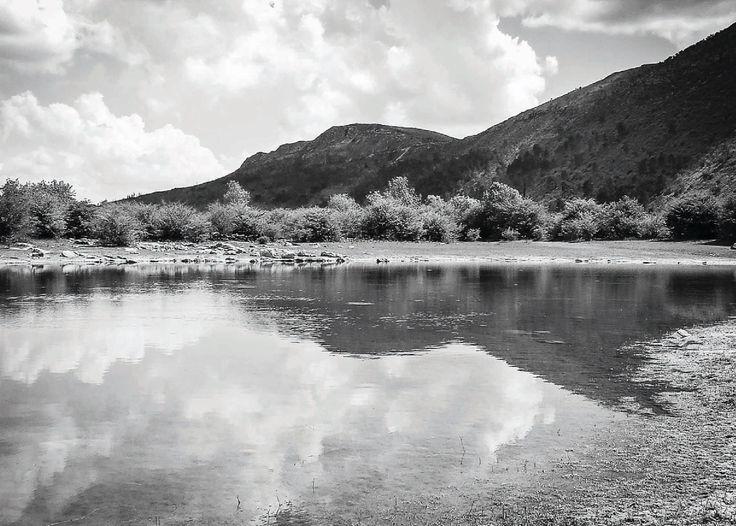 Nature Photography - Paulo Gonçalves