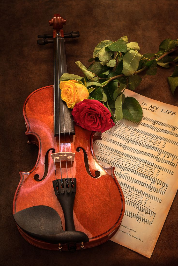Empty room with chair violin and sheet music on floor photograph -  Violin And Rose A2 Print 2