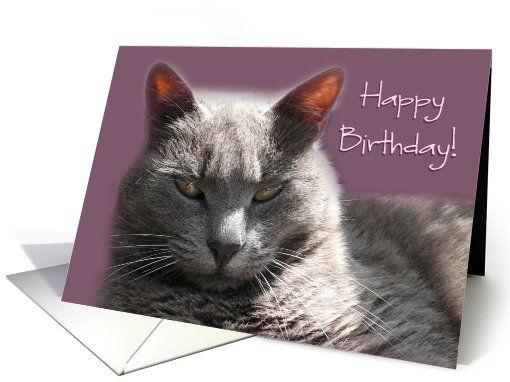 Happy Birthday Russian Blue Cat card I Cats – Birthday Greetings in Russian