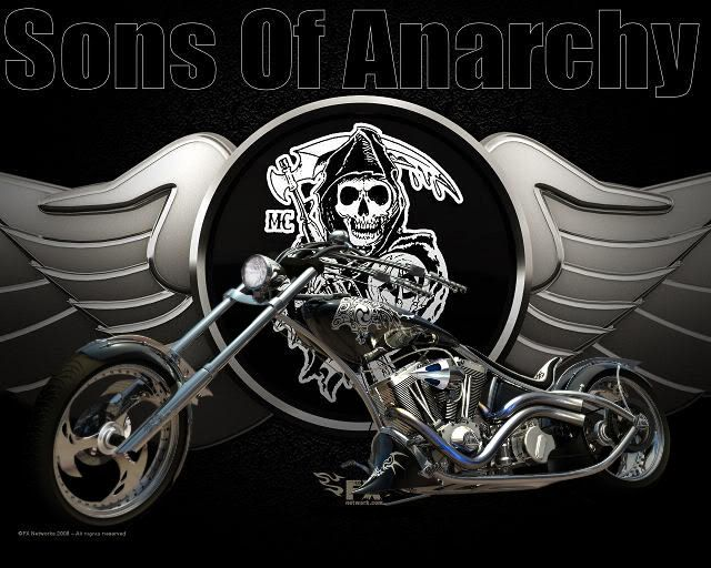 300 Best Harley And Stuff Images On Pinterest