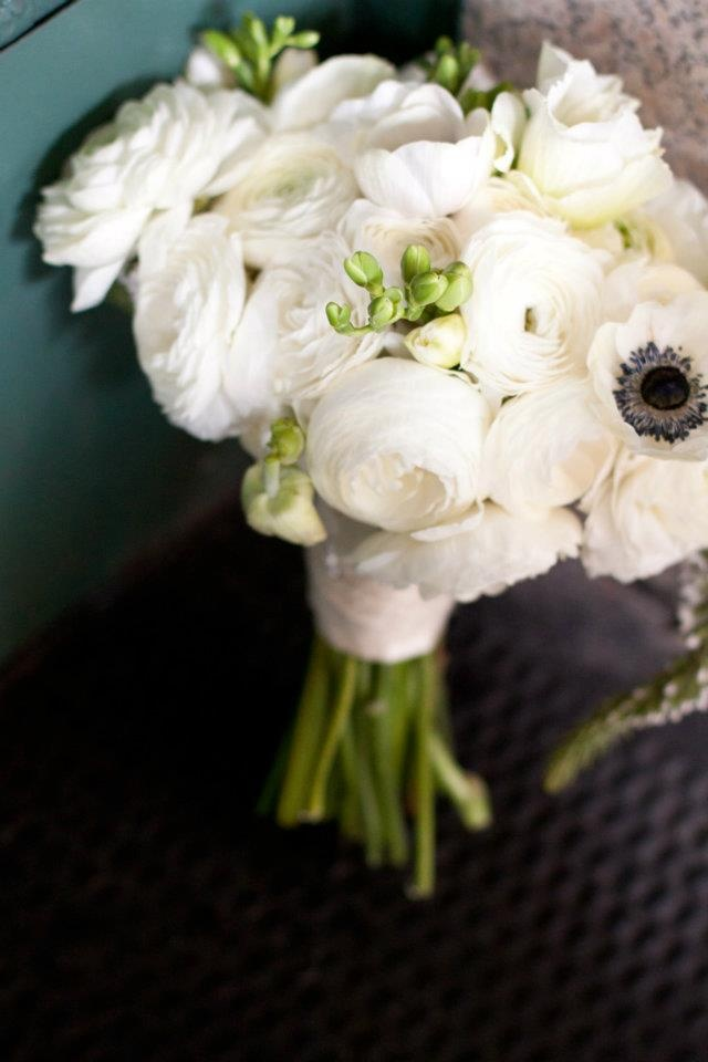Best 25 White Anemone Ideas On Pinterest Wedding Flower Guide And Flowers Names