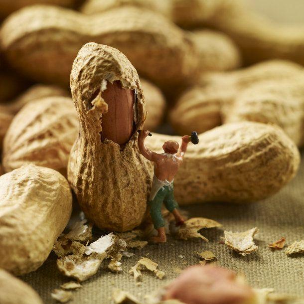 Miniaturen in een humoristisch eetbaar decor