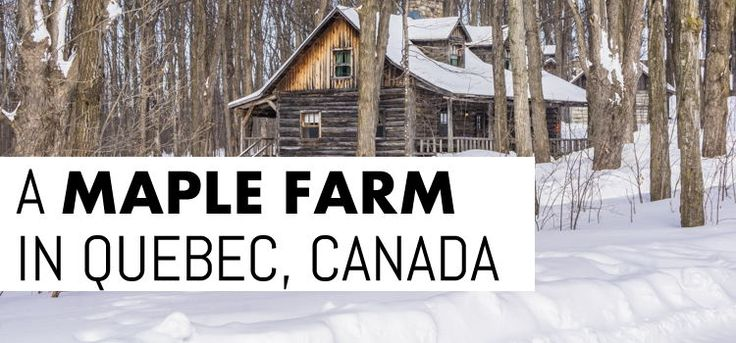 Visit maple farm Sucrerie de la Montagne in Quebec, Canada, to discover the traditional life and times of the Lumberjacks. With The Travel Tester