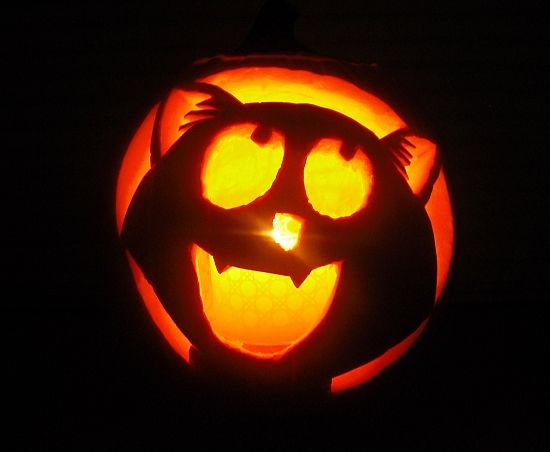 The 25 best cat pumpkin carving ideas on pinterest for Simple pumpkin stencils