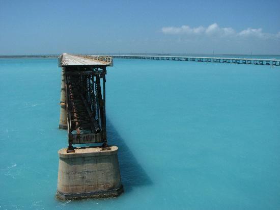 Big Pine Key Tourism: 29 Things to Do in Big Pine Key, FL | TripAdvisor