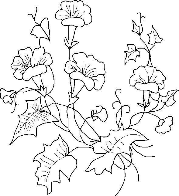 borduren embroidery