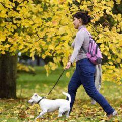 Traitement de la fibromyalgie : opinions d'experts   PsychoMédia