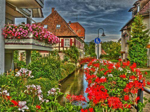 Black Forest,Ortenaukreis, Germany   Ettenheim Photo