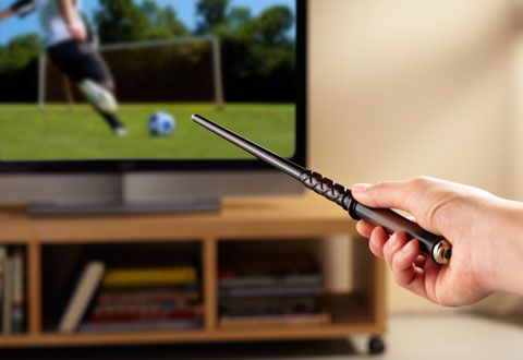 Magic Wand Remote Control for TV - You don't need to go to Hogwarts to be trained in magic! Great gift choice for Harry Potter fan! $89.99