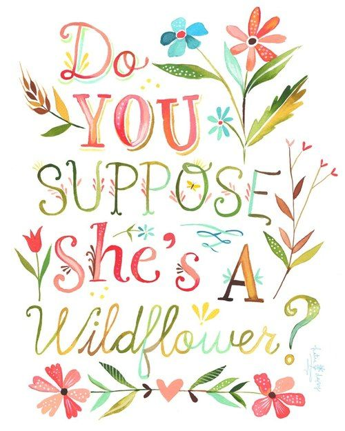 From Alice in Wonderland:  Daisy: What kind of a garden do you come from?  Alice: Oh, I don't come from any garden.  Daisy: Do you suppose she's a wildflower?