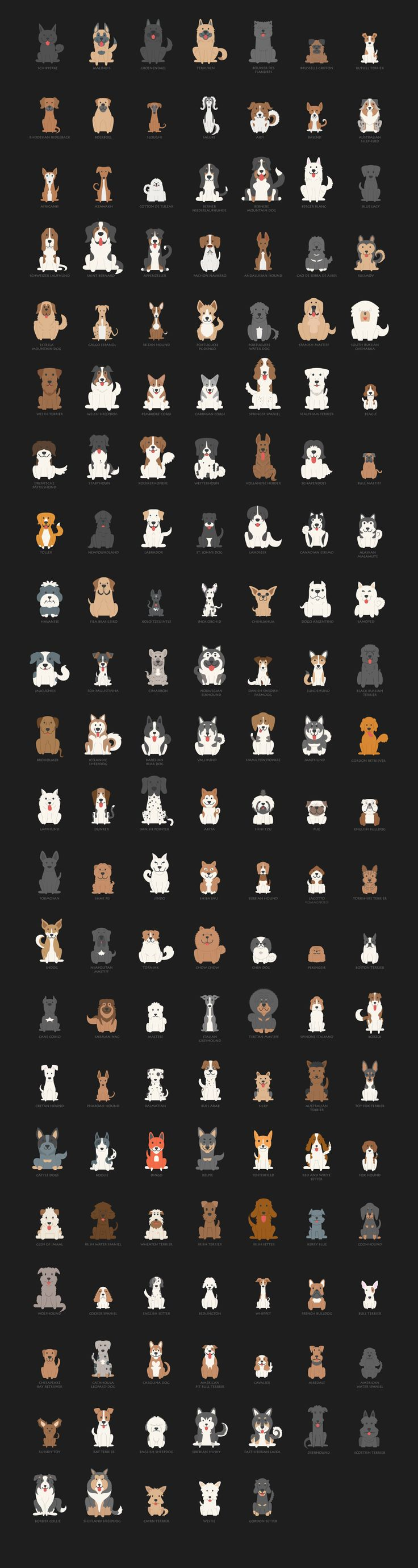 Dog Charact by eucalyp on @creativemarket