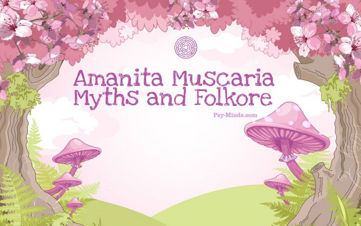 Amanita Muscaria Myths and Folkore - @psyminds17