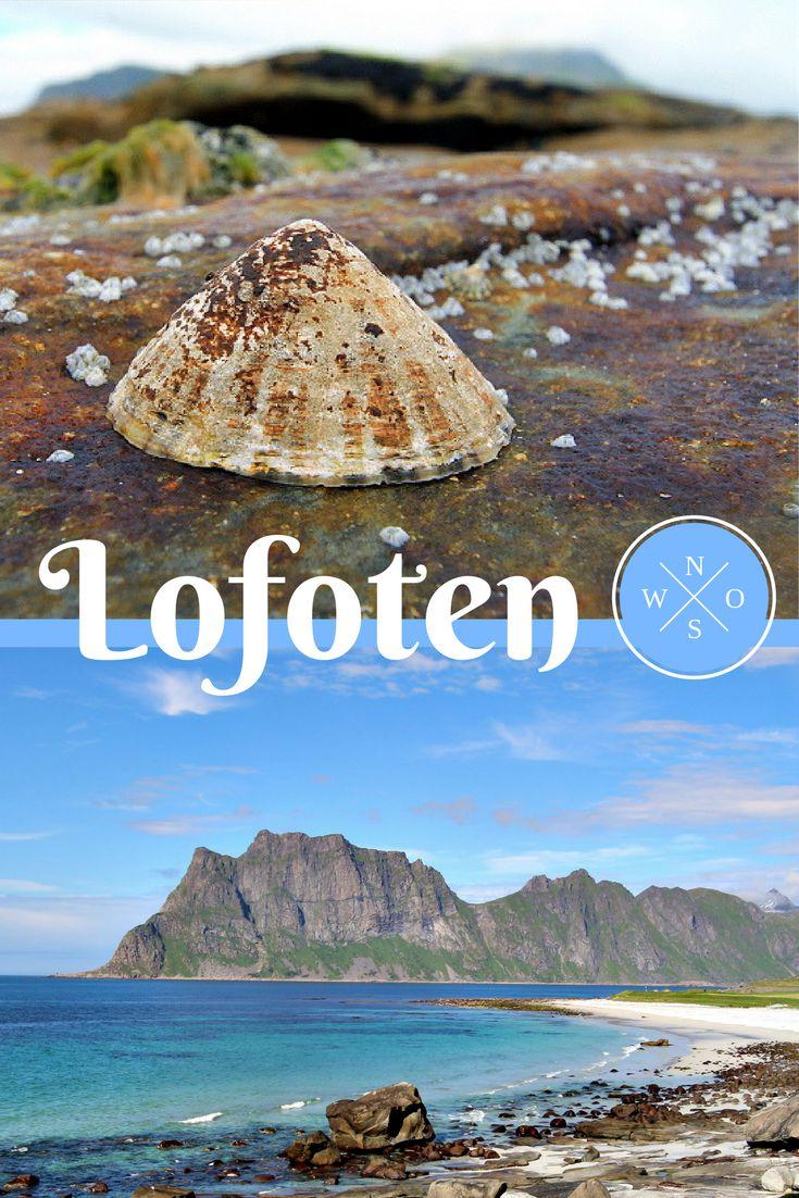 Die Lofoten in Norwegen sind wirklich traumhaft. Perfekt für eine Reise mit dem Wohnmobil. Finde hier alle wichtigen Infos zu einer Reise auf die Lofoten.
