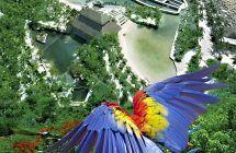 Passeio Xcaret Plus | Passeios em Cancun | Tio Nene Tours