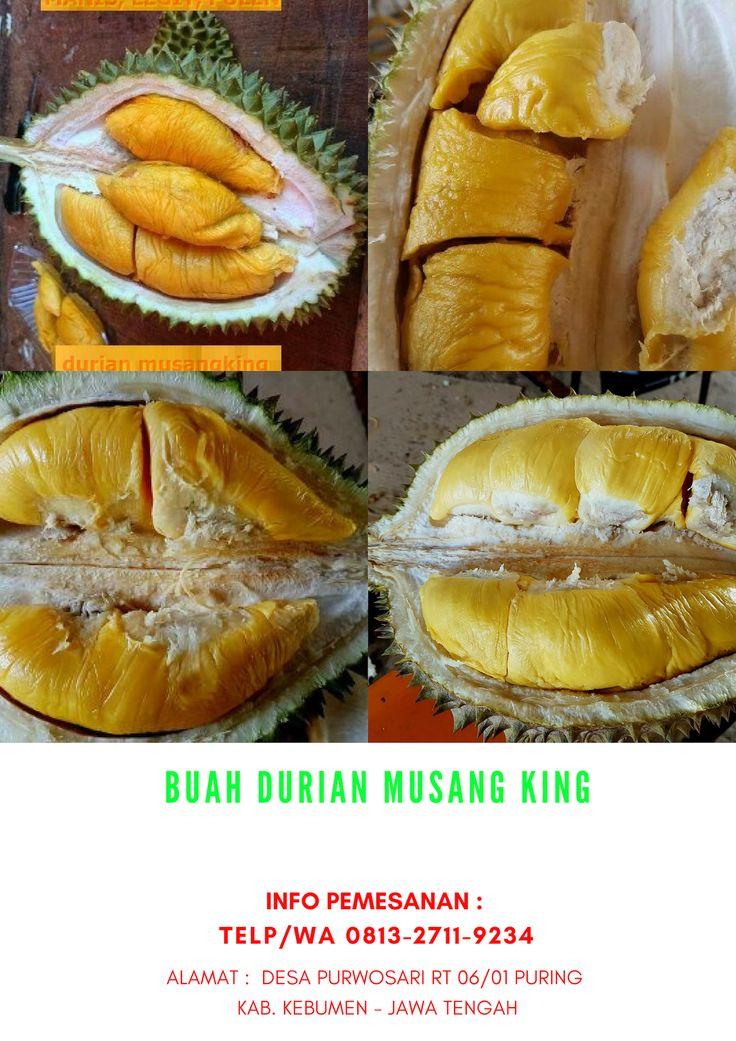 Hp/Wa 081327119234, harga bibit durian musang king