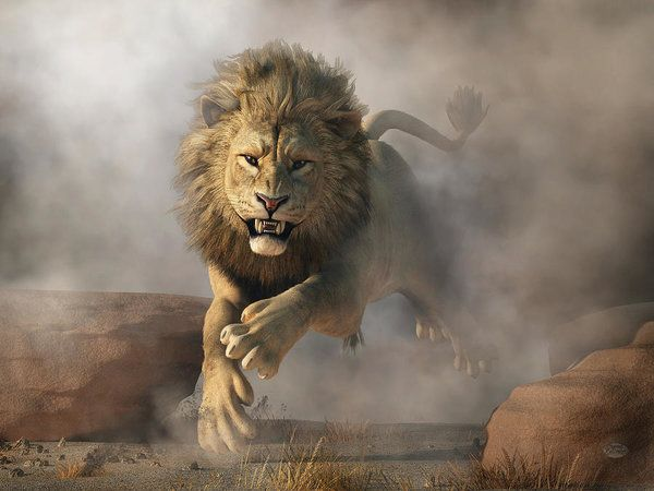 Lion Attack Art Print By Daniel Eskridge Lion Pictures Lion Art Lion Wallpaper