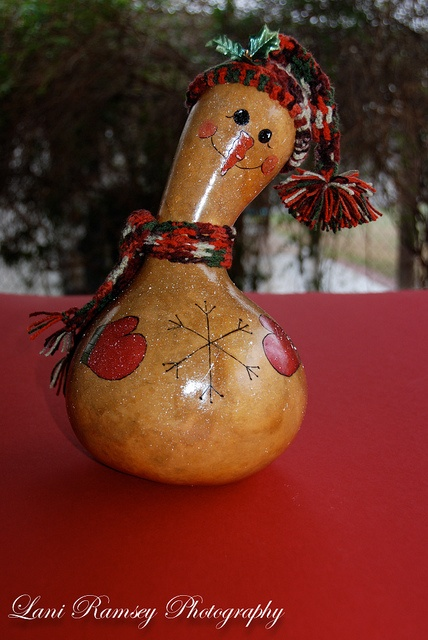 358 best images about gourds on pinterest raggedy ann for Where to buy gourds for crafts