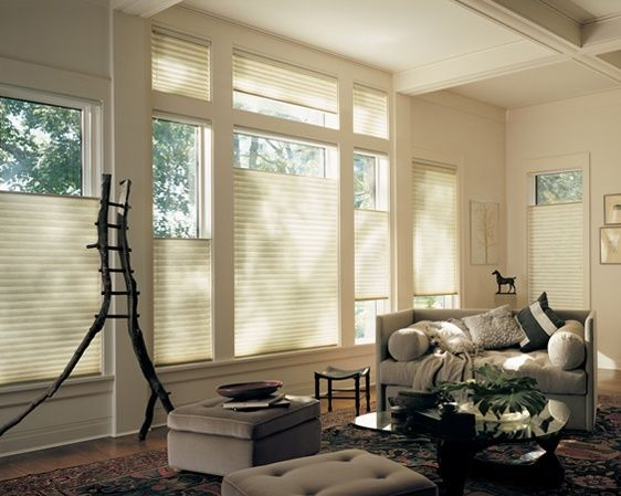 Create comfort with the diffusion of natural light and the added benefit of energy efficient honeycomb shades. ––Alustra® Duette® Honeycomb Shades ♦ Hunter Douglas Window Treatments  DiningRoom