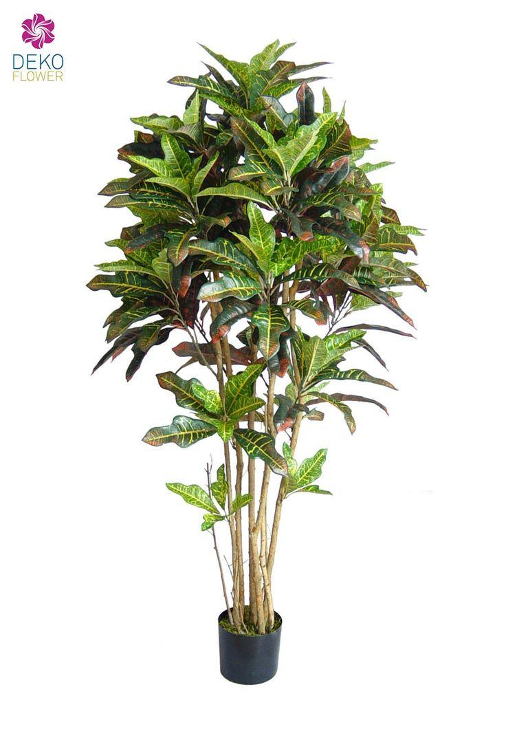 Künstlicher-Croton ca. 210cm hoch