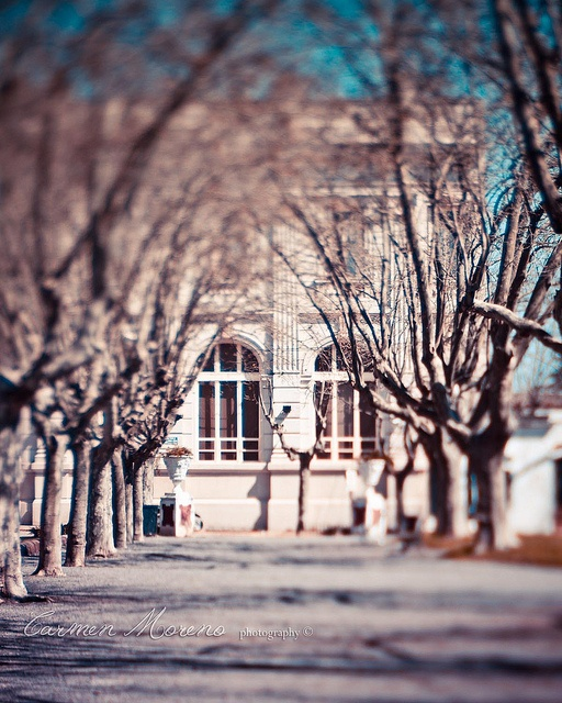San Antonio de Areco by Carmen Moreno Photography (BUSY), via Flickr  @Lensbaby