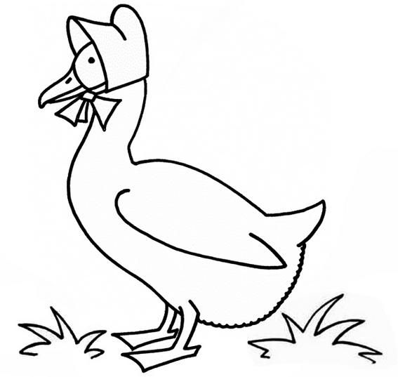 Funny Goose Cartoon Coloring Page Animal Coloring Pages