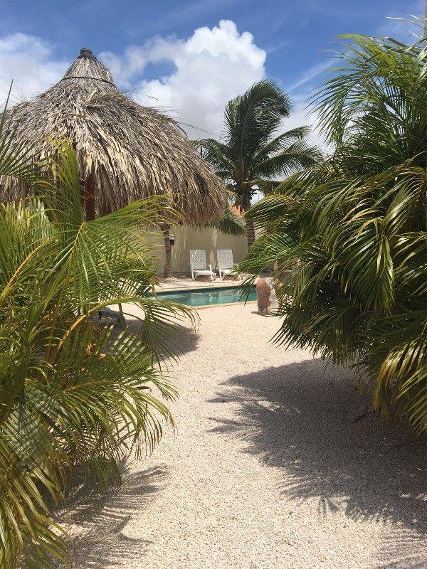 #Vakantiehuis #curacao curacao   #Chenice #Apartments huren  Een heerlijke tropische vakantie!