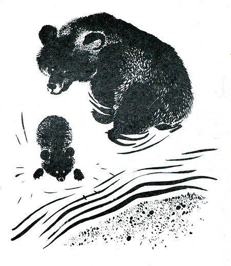 """Bear - big bear"" N. Smirnovoy with illustrations by E. Charushin (1966)"