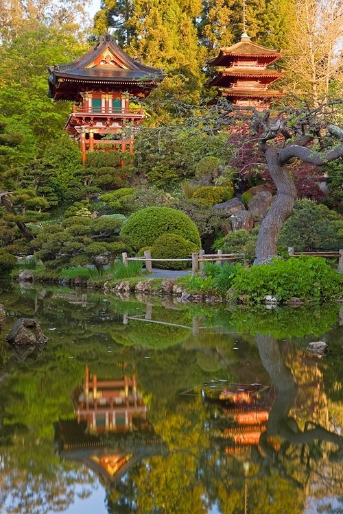 435 best san francisco my heart images on pinterest san fabulous view of the japanese tea garden golden gate park san francisco fandeluxe Gallery