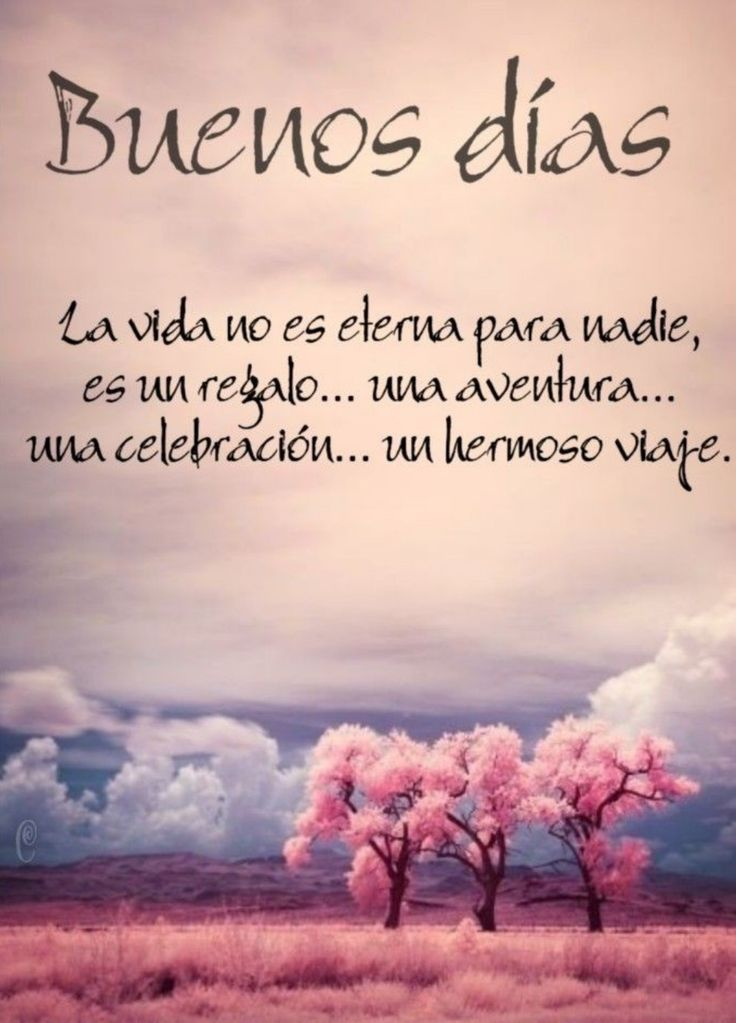 La vida es perfecta – #Buenos dias amor #Buenos dias cafe #Buenos dias frases po…