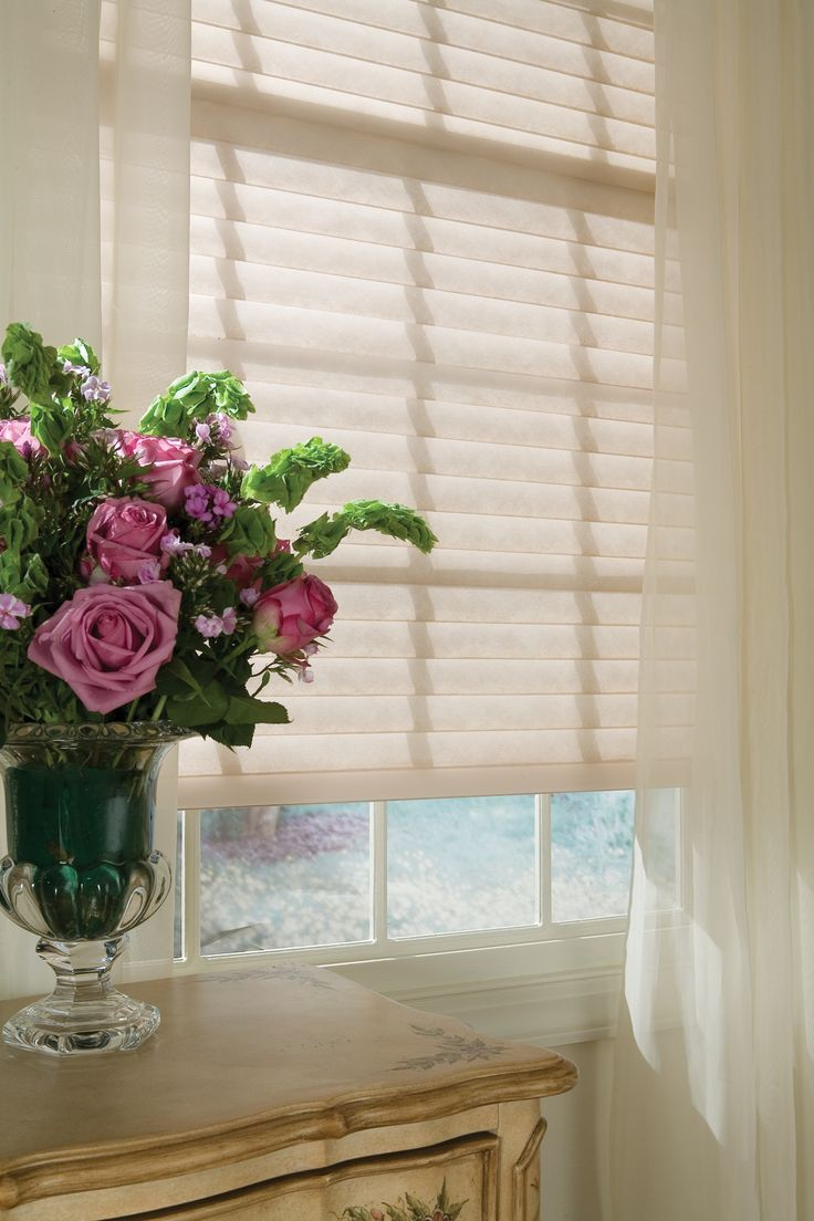 Window treatment day blinds