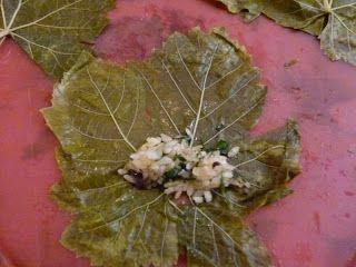 Schritt für Schritt Anleitung und Rezept für gefüllte Weinblätter ägyptische Art, Ägyptisch kochen, Ägyptische Rezepte