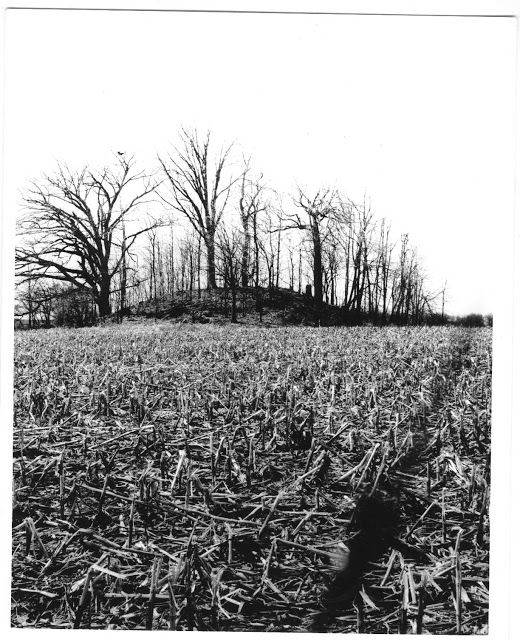 Indiana Native Plants: Mound Builders: Mound Builders In Randolph County, Indiana