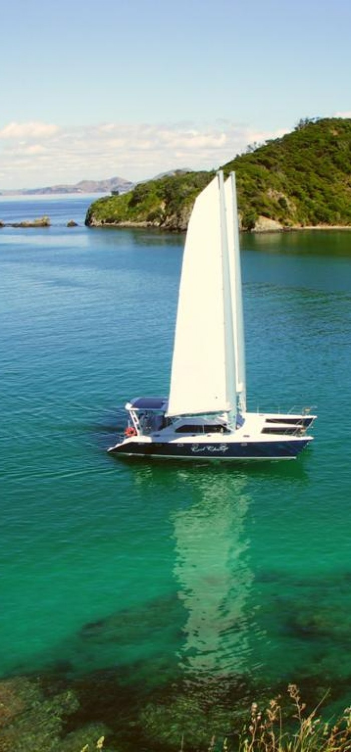 Sail through New Zealand in style.