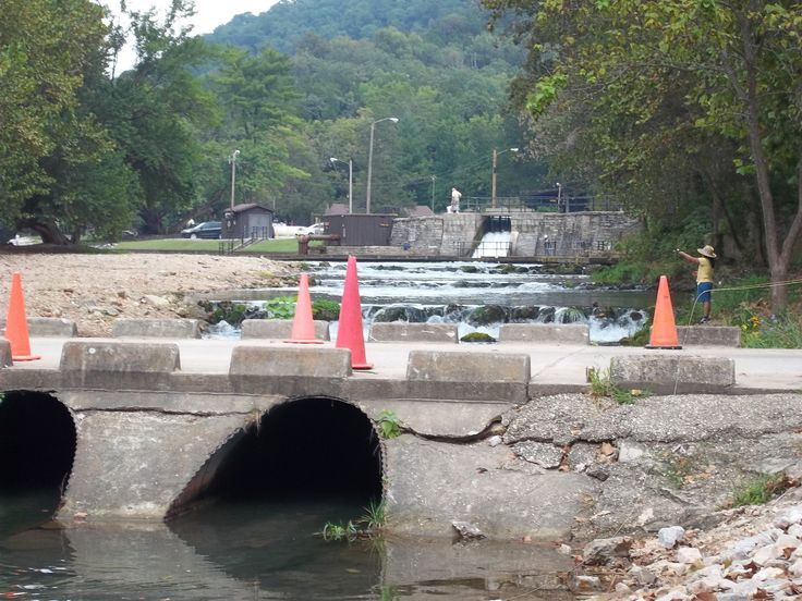 17 best images about roaring river state park trout for Roaring river fish hatchery