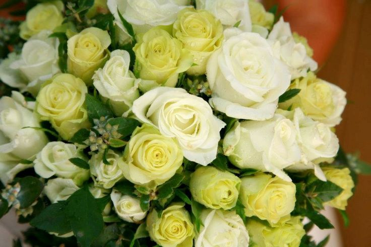 Brides bouquet of white and lemon roses with nutty blue gum