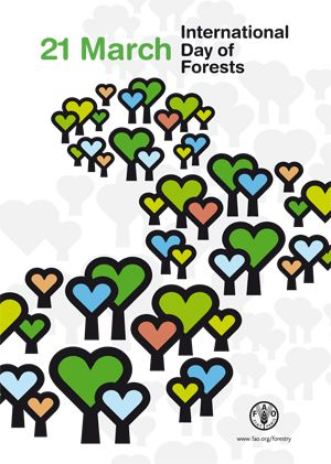 The United Nations General assembly has proclaimed 21 March the International Day of Forests. From 2013, the day will be observed each year to celebrate and raise awareness of the importance of forests and trees to all life on earth.
