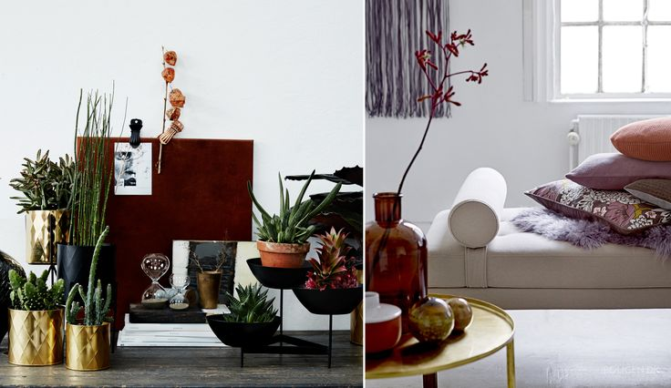 Frisk hjemmet op med planter og flowerpower