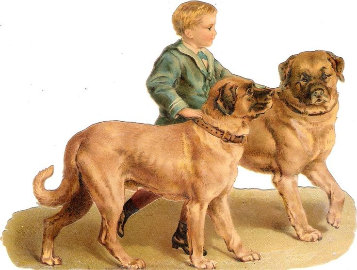 Oblaten Glanzbild scrap die cut chromo  Kind child  XL 17cm Bub Hund dog