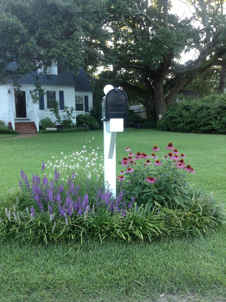 Mailbox flowers at their peak!