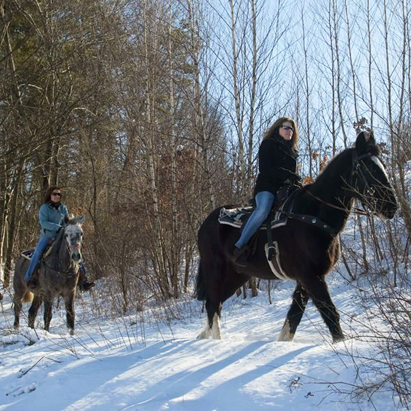 Take a winter horseback ride through the Pocono Mountains! #PoconoMtns